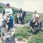 γαϊδουράκια στο πανηγύρι του Αη Γιάννη